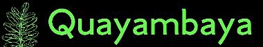 Quayambaya